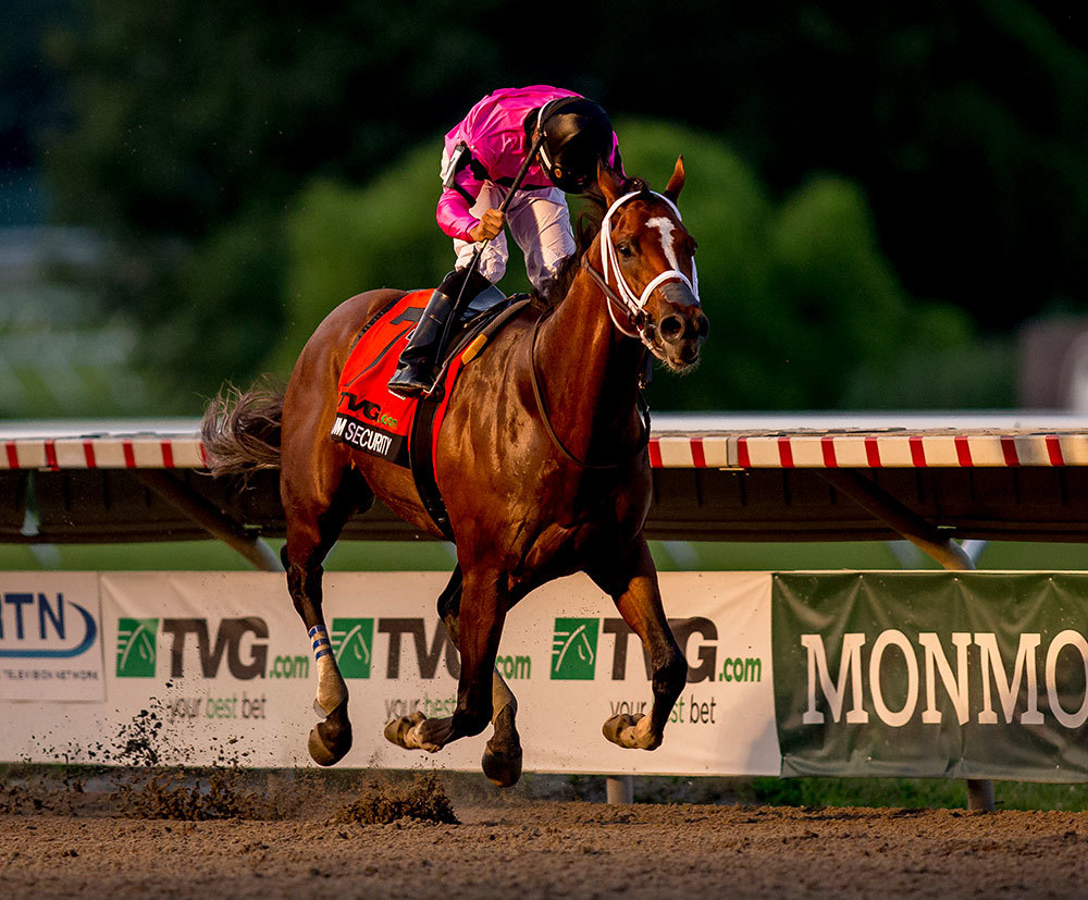The racehorse Maximum Security, whose Kentucky Derby victory was disqualified, was one of many horses doped illegally as part of a major scheme.